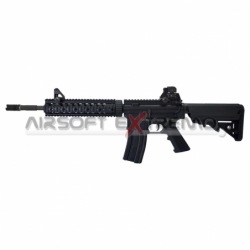 LCT LR4-RIS 10'' BlowBack